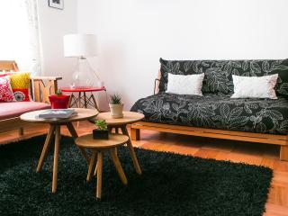 Spacious and Quiet in Bellas Artes - Santiago Metropolitan Region vacation rentals