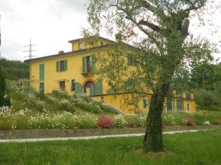 Luxury villa il campano near the Pinocchio's park - Collodi vacation rentals