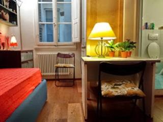Small apartment in the heart of Florence - Florence vacation rentals