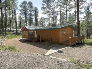 Cozy 3 bedroom Cabin in Ruidoso - Ruidoso vacation rentals