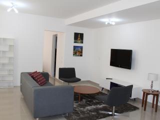 Alphaville Igloo 162 - Sao Paulo vacation rentals