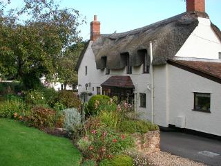 Hartnells B&B - Williton vacation rentals