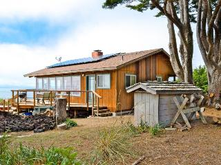 Gorgeous, dog-friendly, oceanfront home w/private hot tub & spectacular views - Albion vacation rentals
