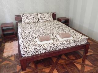 The heart of Lviv - Lviv vacation rentals