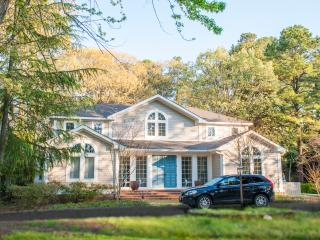 Huge Extended Family Beach Rental, 71 Pine Reach - Rehoboth Beach vacation rentals