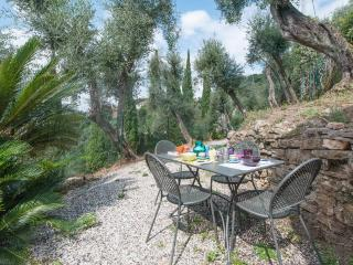 Rustico Dolce Wi-Fi and garden in Olive Grove - Lerici vacation rentals