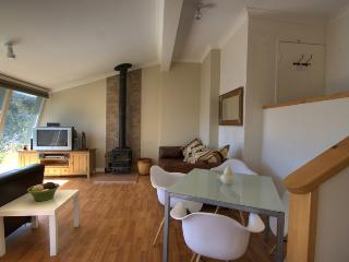 Dauphine 1 - Jindabyne vacation rentals