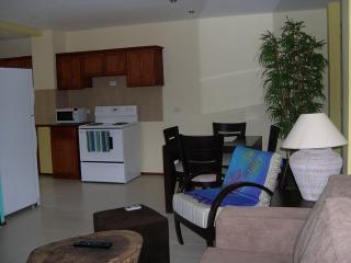 Lovely Condo with Internet Access and Shared Outdoor Pool - Tamarindo vacation rentals