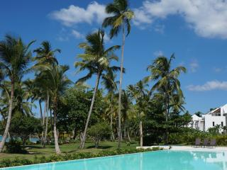 Oceanfront Condo, Playa Bonita, Las Terrenas, DO - Las Terrenas vacation rentals