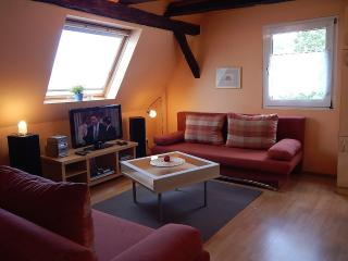 Vacation Apartment in Koblenz - 603 sqft, direct views to the Rhine River, great starting point for… - Rhineland-Palatinate vacation rentals