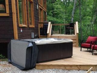Camryn's Loft ~ RA47279 - Bryson City vacation rentals