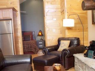Treehouse C ~ RA47315 - Bryson City vacation rentals