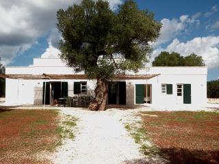 Podere Ostuni - Puglia vacation rentals
