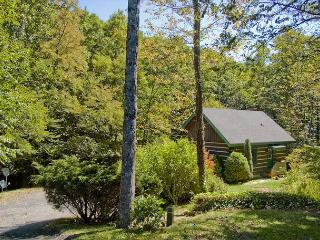 Beautiful Unique Log Home on Creek in Blue Ridge Mountains - West Jefferson vacation rentals
