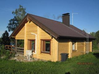 Perfect Cottage with Internet Access and A/C - Joroinen vacation rentals