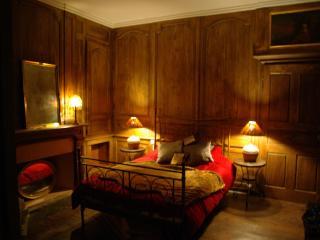 Fabulous apartment in Medieval city of Dinan - Dinan vacation rentals