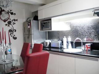 Uniquely Modern 3br flat Tomas Morato Q.C. - Quezon City vacation rentals