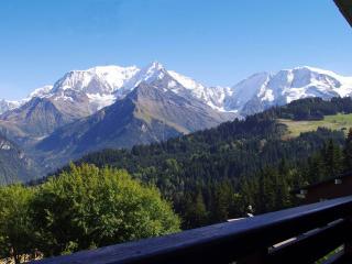 O'Panorama: Grande Baie vitrée face au Mont-Blanc! - Saint Gervais les Bains vacation rentals
