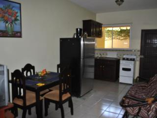"APARTAMENTS ""ALTOS DE VERACRUZ"" - Leon vacation rentals"