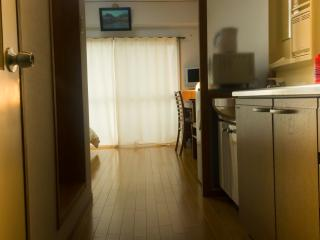 Beautiful Studio Apartment in Historical Okazaki - Kyoto vacation rentals