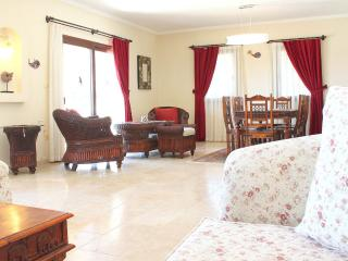 Nice House with Internet Access and Dishwasher - Ortakent vacation rentals