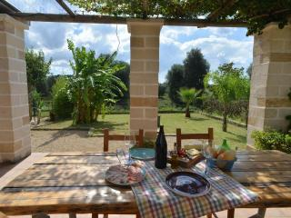 Italian Villa set amongst the olive groves - Uggiano La Chiesa vacation rentals