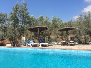 200-year-old farmhouse gated pool, Andalucía Spain - Sorvilan vacation rentals