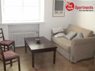 Apartment that is Close to Everything - Helsinki vacation rentals