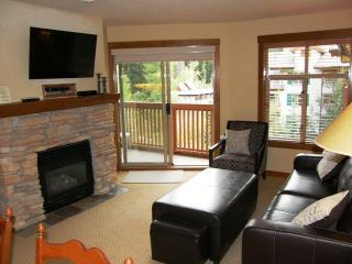 Perfect House with Deck and Internet Access - Solitude vacation rentals