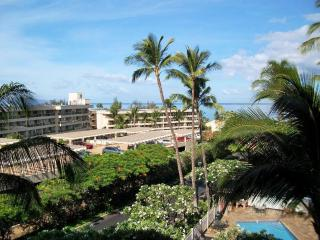 Kihei Akahi 1 Bedroom D413 - Kihei vacation rentals