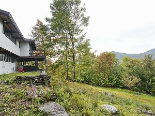 Perfect House with Deck and Internet Access - Stowe vacation rentals
