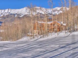 Walker Residence - Mountain Village - Mountain Village vacation rentals