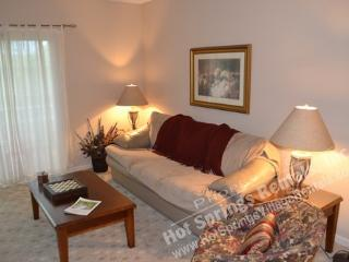 54PerrWy   Valencia Cts  Sleeps 4 - Hot Springs Village vacation rentals