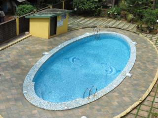 06) SPACIOUS APT ARPORA sleep 6 & WiFi - Vagator vacation rentals