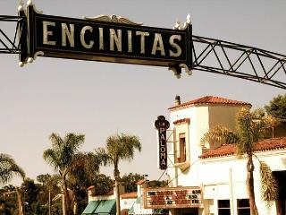 Single family 8br, 6.5ba home on the ocean,Designer Decorated & A/C Equipped - Encinitas vacation rentals