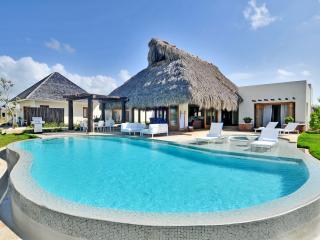 5 BDR Villa in Cap Cana Cayuco - La Altagracia Province vacation rentals