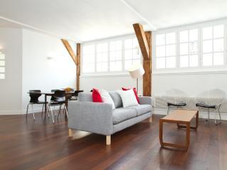 57. Spacious and Modern Apartment - Bastille - Paris vacation rentals