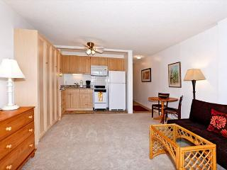 FREE WiFi & Parking!  Studio with compact kitchen, AC & washer/dryer! - Waikiki vacation rentals