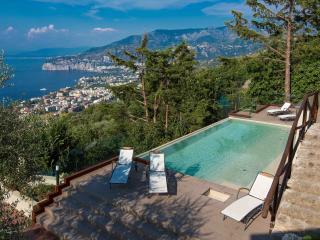 Villa Davide,infinity pool,sea view,Jacuzzi,garden - Sorrento vacation rentals