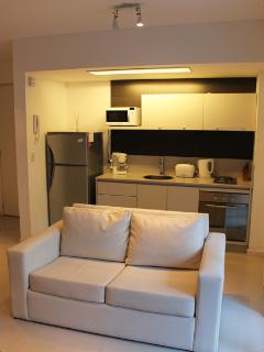 Brand new 1 bedroom apartment in Palermo Soho - Soler and Borges (66PAS) - Buenos Aires vacation rentals