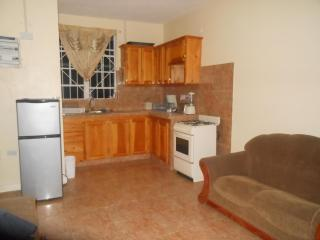 1 bedroom Apartment with Internet Access in Roseau - Roseau vacation rentals