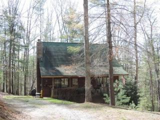 Welcome to It`s 5 o`clock Somewhere - Ellijay vacation rentals