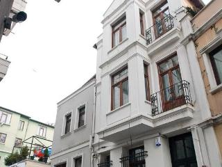 Family House  near Taksim 5BR  W /Kitchen/Garden - Istanbul vacation rentals