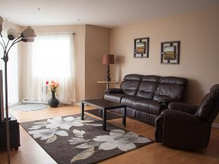 Nice and big 2 bedroom apartment. Awesome water view 10 min from Downtown - Brossard vacation rentals