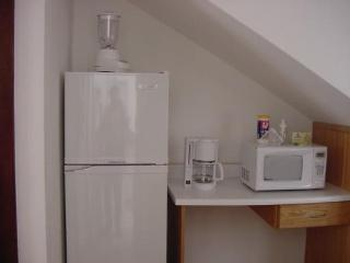 Nice Condo with Internet Access and A/C - Oaxaca vacation rentals