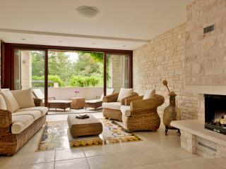 Luxury Villa Finida - Istria vacation rentals