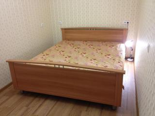 2 room apartment in the center - Russia vacation rentals