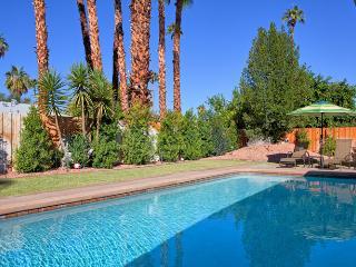 Birdie Modern Retreat - Palm Springs vacation rentals