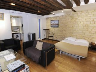 Vacation Haven in the Heart of Paris - Paris vacation rentals