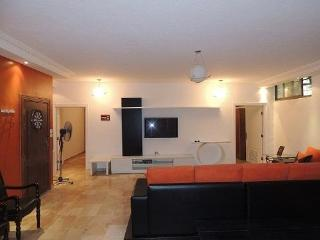 Neat flat for rent - Amman vacation rentals